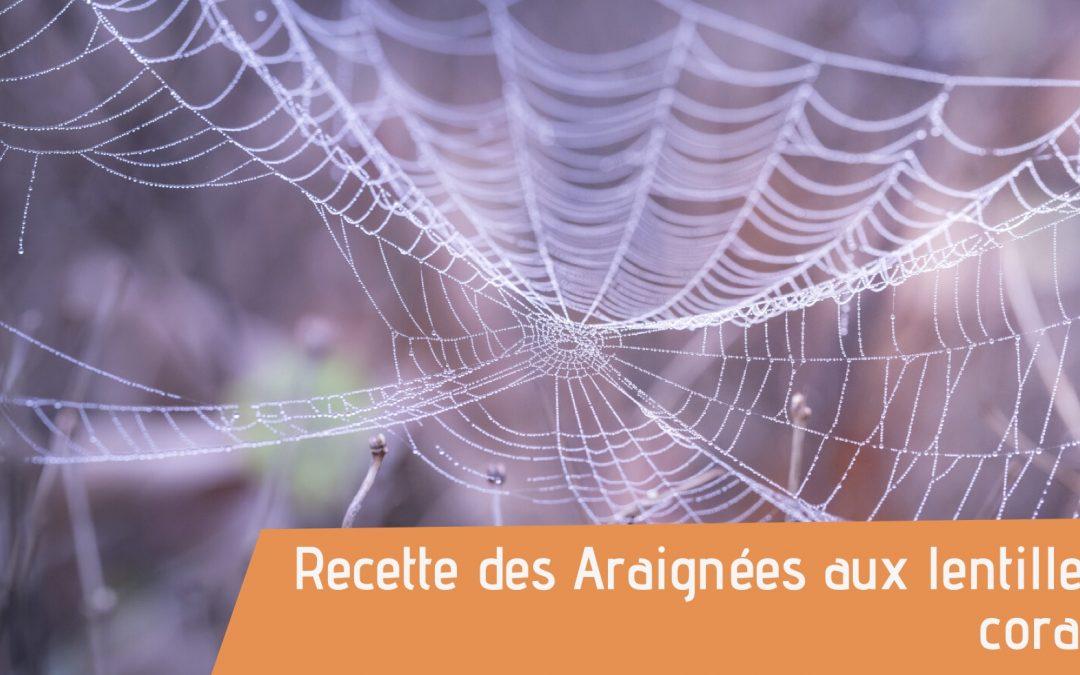 Couverture de la recette des araignées d'halloween