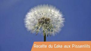 recette cake aux pissenlits bio