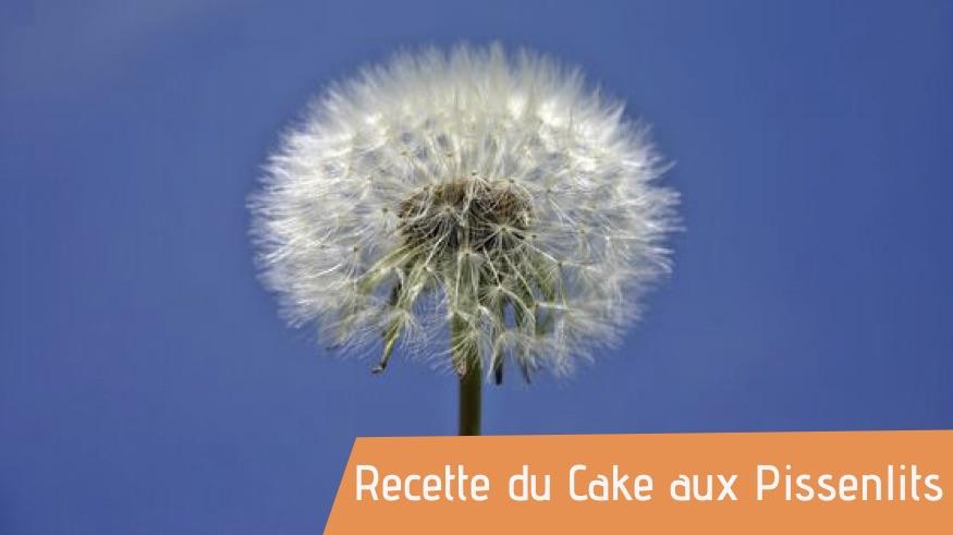 Recette : Le Cake aux pissenlits