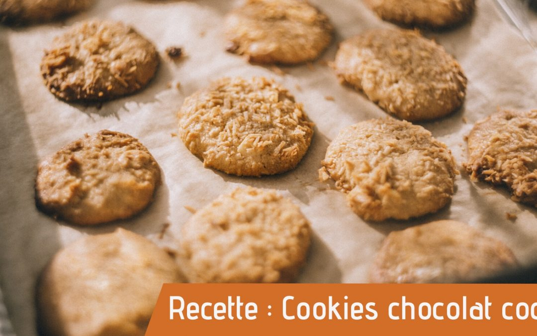 Cookie bio pour recette des cookies chocolat coco