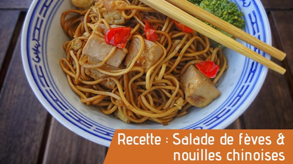 Salade de fèves et nouilles chinoises recettes bio