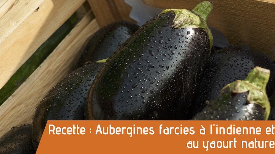 aubergines frais bio