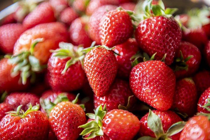 fraise bio fraichement coupée