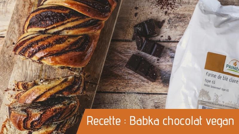 Recette : Babka chocolat vegan